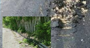 Pergantian ULP Donggala Diduga Sumber Malapetaka